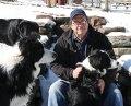 Jon-Katz-and-dogs