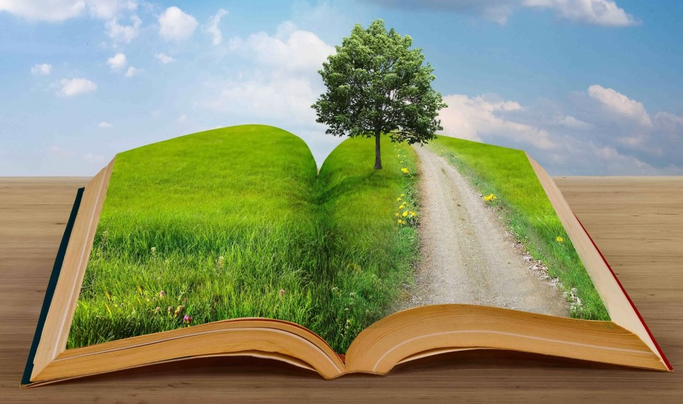 beyond the books a place where we talk about books books and
